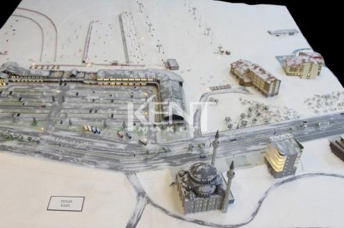 Erciyes-Tekir-001